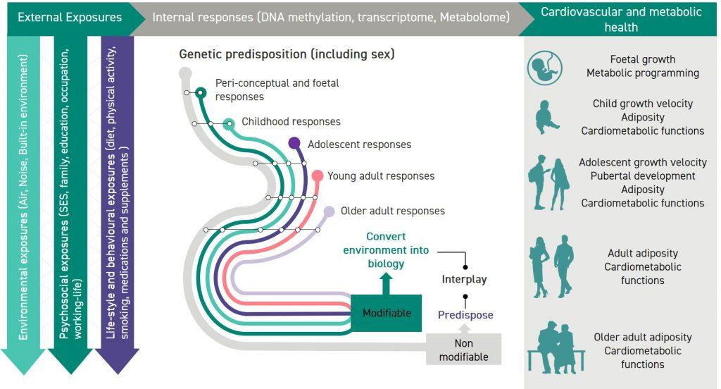 LT approach diagram