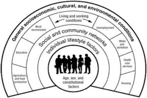 Determinants of health model